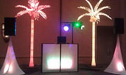 Light up booth palm trees